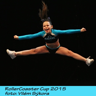Roller Coaster Cup 2015